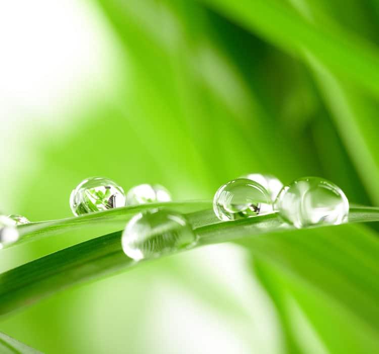 Unsere Selbstbedienungswäscherei, unser Waschsalon oder unser Waschsalon sind umweltfreundlich
